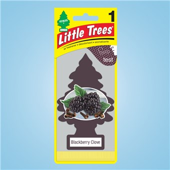 Tree Air Freshener - Blackberry Clove (24 CT)