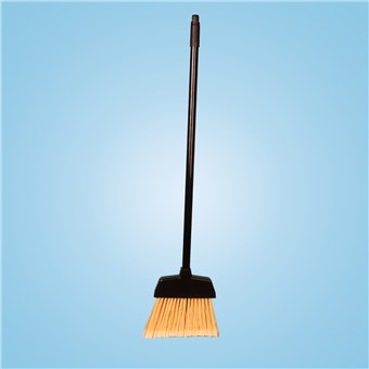 Dust Pan Broom